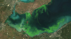 Satellite photo of Lake Erie