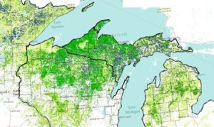 map of forest cover